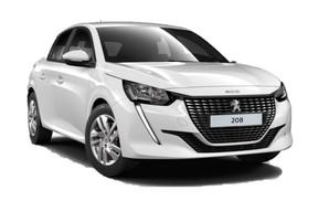 Grupo  L: Peugeot N 208 o similar